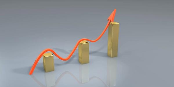 Revisa las estadísticas de tu blog o negocio a diario